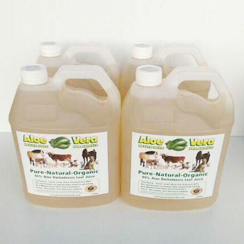 4 x 4 Litre Aloe Juice for Animals