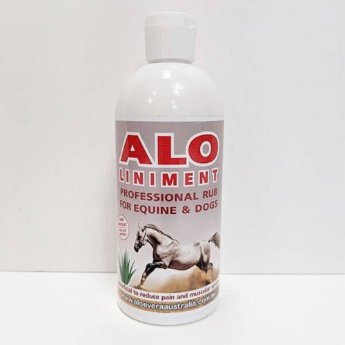 ALO Liniment for Equine Rub