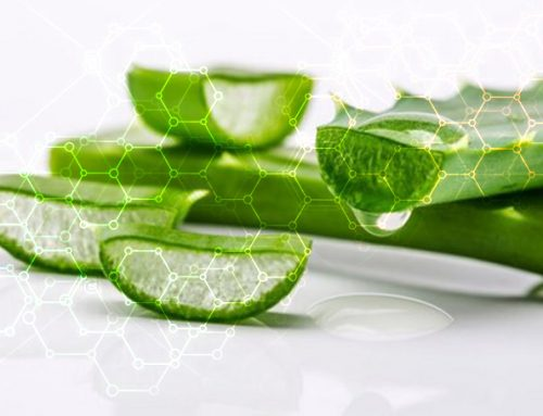 Naturally Occurring Compounds Found in Aloe Vera